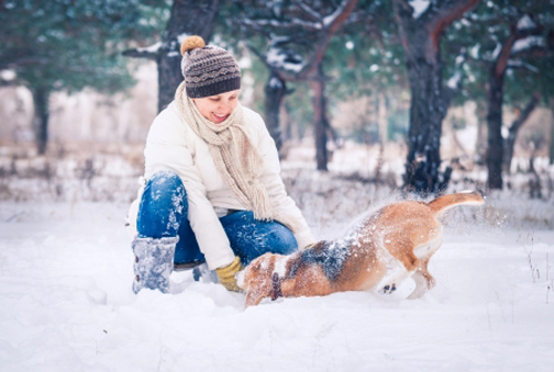 25517394 - happy woman playing with her dog in snow in winter park